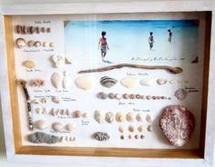 beach memory frame with photo and shells