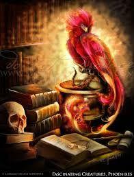 Image Result For Hogwarts