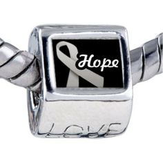 Pugster Hope Ribbon By Amber Photo Beads Fit Pandora Chamilia Biagi Charm Bracelet Pugster. $12.49. Fit Pandora, Biagi, and Chamilia Charm Bead Bracelets. It's the photo on the love charm. Bracelet sold separately. Hole size is approximately 4.8 to 5mm. Unthreaded European story bracelet design
