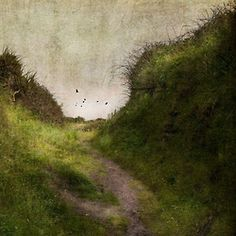 The Brilliance of Ordinary (by jamie heiden)