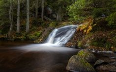 Download wallpapers waterfall, forest, lake, autumn, autumn forest, Habo, Ravafallet, Sweden