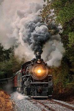My inner landscape Train Tracks, Train Rides, Train Tattoo, Gravure Illustration, Old Steam Train, Images Gif, Train Art, Train Pictures, Old Trains