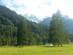Mille sfumature di verde.  Falcade Dolomiti