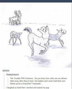 Problems with centaurs