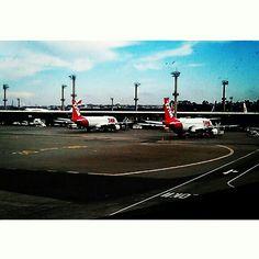 Aeroporto Internacional de São Paulo. #patriciachen