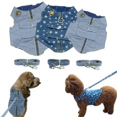 Denim Dog Harness Vest and Leash Blue Padded Jacket Jean Star Clothes with Pocket For Small Dogs Cat Chihuahua Small Puppies, Small Dogs, Dogs And Puppies, Star Clothing, Pet Dogs, Pets, Old Jeans, Padded Jacket, Dog Harness