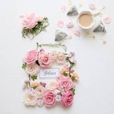 Resultado de imagem para rose