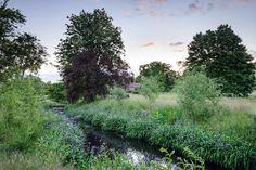 Berkshire — Dan Pearson Studio Dan Pearson, Garden Landscaping, Landscape Photography, Garden Design, Vineyard, History, Studio, Plants, Outdoor