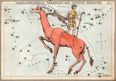 "Obsolete constellations Tarandus (Rangifer) and Custos Messium shown where they used to be near Camelopardalis (the giraffe). Taradus was devised by Le Monnier to commemorate an expedition to Lapland. Custos Messium was invented by Lalande to honor Charles Messier the comet hunter. Mona Evans, ""Obsolete Constellations"" http://www.bellaonline.com/articles/art300737.asp"
