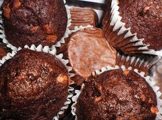 Double Chocolate Chip Mini Muffins