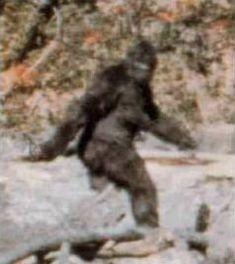 Bigfoot...My old friend....&#3212