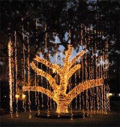 Christmas Tree Decoration,Christmas Outdoor Decor 2011