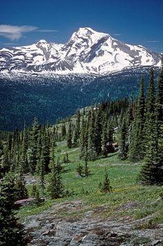 Glacier National Park (scheduled via http://www.tailwindapp.com?utm_source=pinterest&utm_medium=twpin&utm_content=post55141264&utm_campaign=scheduler_attribution)