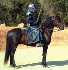 medieval war horses - Google Search