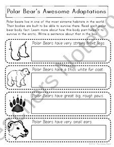 Polar bear research unit $3