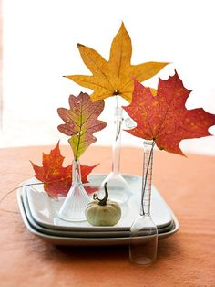 fall leaves in bud vases... clever!