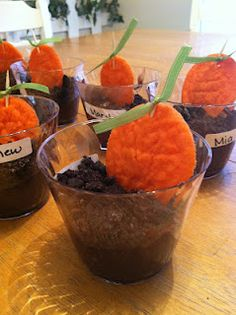 How to grow a carrot in 30 mins ;) Really fun activity to do with young kids!
