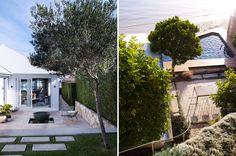 Concrete Bench, Australian Garden, Outdoor Living, Outdoor Decor, Garden Inspiration, Garden Landscaping, Outdoor Gardens, Building A House, Backyard
