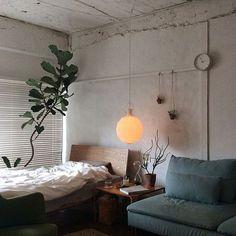 男性で、1Kの植物/照明/ベッド/ソファ/レクリント/ベッド周り…などについてのインテリア実例を紹介。「久しぶり投稿ですー」(この写真は 2015-07-04 11:42:17 に共有されました)
