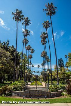 Will Rogers Memorial Park in Beverly Hills, by dvdpicasso on Flickr.