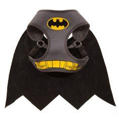 DC Comics™ Pet Halloween Batman Harness | Harnesses | PetSmart