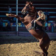 "Instagram media by hulkader - ""От лошадей не отказываются, никогда."" #верховаяезда #лошади #конныйклуб #умныемысли #цитаты #лошадь #жеребец #кабардинец #forever #love #шоурыцарей #рыцарскиетурниры #Сукко #Анапа #anapaok #gkanapa #allanapa  http://vk.com/club128346603"