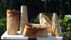 New beginnings - Royal Palm Sheaths... what will they become?