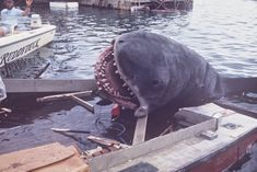Rare Behind the Scenes Photographs From the Filming of 'Jaws' on Katama Bay, Martha's Vineyard in 1974 ~ vintage everyday Horror Icons, Sci Fi Horror, Horror Films, Scary Movies, Good Movies, Jaws Movie, Jaws 2, Shark Jaws, Sharks