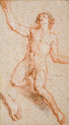 Charles de LA FOSSE, Etude pour Saint Jean l'Evangéliste, sanguine rehaussée de pierre noire, traces de craie blanche, 41,7 x 23 cm. © MuMa Le Havre / Florian Kleinefenn