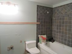 Sherwin-Williams Sea Salt | dug out Sherwin Williams Sea Salt. A much softer hue with some ...