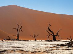 Photographic safaris at Little Kulala Sossusvlei in the Namib Desert in Namibia. Safari Holidays, Namib Desert, Namibia, The Dunes, African Safari, Africa Travel, Vacation Destinations, Continents, Wilderness