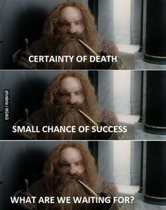 Gimli, Lord of the Rings// reminds me of so many characters we've created lol