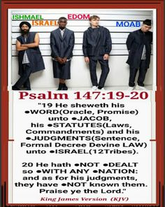 These pagan religions got everyone believing that Christ is coming back for all nations, that's not what God said. Bible Scriptures, Bible Quotes, Hebrew Quotes, Bible 2, Biblical Quotes, Israel History, Bible Dictionary, Babylon The Great, Tribe Of Judah