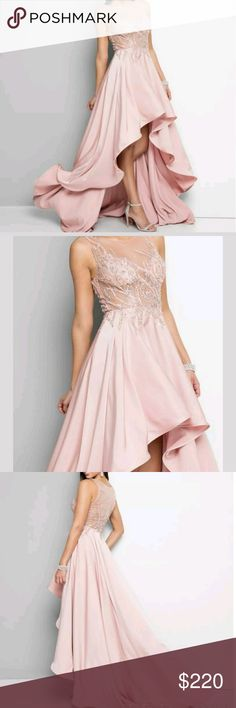 Terani Couture Gown Stunning blush beaded Terani gown in size 2.   lined skirt.  has built in cups.  New with tags.    Only flaw is shown in last pic.  Missing hook and other hook needs to be reattached.   Style 1712p2465 Terani Couture Dresses