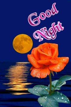 🌼🌼EDA🌼🌼 Funny Good Night Quotes, Good Night Messages, Good Night Friends, Good Night Wishes, Good Night Image, Good Morning Good Night, Morning Msg, Good Evening Greetings, Good Night Flowers