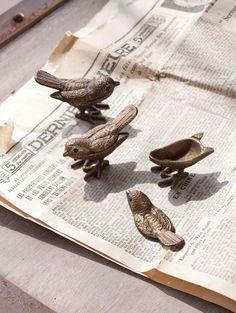 Cute treasure box birds.