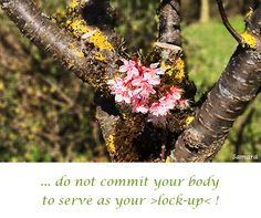 ... do not commit your #body to serve as your >lock-up< !