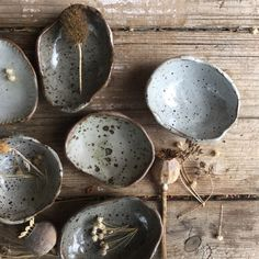Image of Shell dish #27