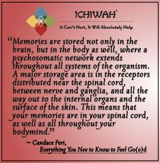 Memories are stored not only in the brain, but in the body as well, where a psychosomatic network extends throughout all systems of the organism. A major storage area is in the receptors distributed near the spinal cord, between nerve and ganglia, and all the way out to the internal organs and the surface of the skin. This means that your memories are in your spinal cord, as well as all throughout your bodymind. – Candace Pert, Everything You Need to Know to Feel Go(o)d