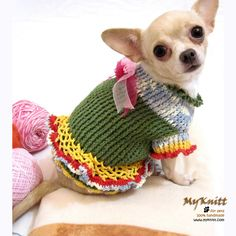 Buy Handmade Dog Clothing Puppy Wedding Dress Costume Clothes Cute Chihuahua at online store Crochet Dog Clothes, Cute Dog Clothes, Crochet Dog Sweater, Chihuahua Costumes, Pet Costumes For Dogs, Dog Wedding Dress, Wedding Dresses, Dog Christmas Gifts, Crochet Christmas