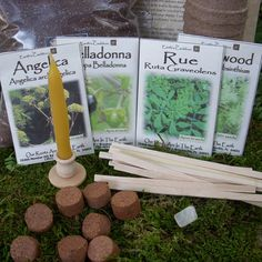 SALE Witch's Garden Herb Collection Kit No. 2  by EarthsCauldron