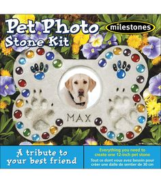 JOANN's has mosaic supplies and craft kits for making beautiful mosaic art. Shop online for glass and ceramic mosaic tiles, stepping stone molds, and more. Ceramic Mosaic Tile, Mosaic Art, Mosaic Glass, Stained Glass, Pet Memorial Stones, Memorial Ideas, Dog Memorial, Mosaic Stepping Stones, Paver Stones