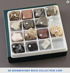 Sedimentary Rocks Collection. Item: 6399900. View this collection and others on our website: https://wardsci.com/store/catalog/product.jsp?catalog_number=6399900