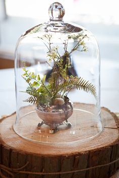 Wedding Terrarium Ce
