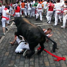 The bulls call it The chasing of the idiots!