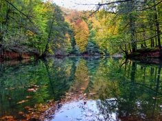 Reflection by ayse  on 500px