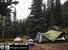 "Free campsites not far from Denver  Repost from @maggie_bateson -> ""5 billion star hotel, i'll take it!"