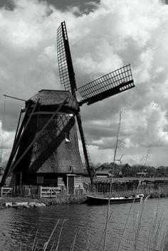 MILLS THE PRIDE OF HOLLAND (1) Photo by Ad Brackel — National Geographic Your Shot