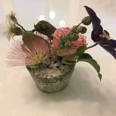 Un vas facut special pentru flori mici Raku Pottery, Vase, Plants, Home Decor, Decoration Home, Room Decor, Plant, Vases, Home Interior Design