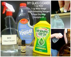DIY GLASS CLEANER with eucalyptus oil - Save money and know exactly exactly what's in your cleaning products. More on our blog.